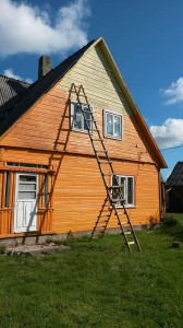 ladder in lithuania